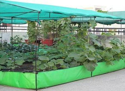 Marvelous Best Quality Of Shade Net House Farming Suppliers Kolkata Download Free Architecture Designs Scobabritishbridgeorg